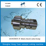 Gute Qualitätswasserstrahlausschnitt-Maschinen-Teil-Rückschlagventil-Karosserie