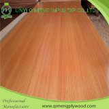 Fornire a 12mm Melamine Plywood Poplar e Hardwood Core