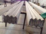 De Staaf van de Hoek van het roestvrij staal AISI 316L