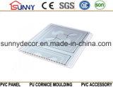 Панель печатание Панел-PVC стены Панел-PVC-потолк-PVC PVC для украшения