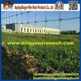 Heißer Verkaufs-Großverkauf-Masse-Vieh-Zaun von Bingye
