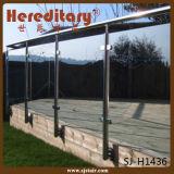 Garde-corps en acier inoxydable dans les pièces d'escalier Garde-corps en verre Barrière à plate-forme à barres (SJ-H1163)