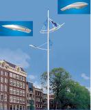 potência pólo da luz de rua 10m