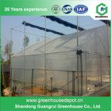 Casa verde de la venta del invernadero de la película agrícola caliente de la flor para Graden