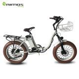 Fett-Gummireifen des Brown-Farben-Gummireifen-faltbarer elektrischer Fahrrad-20inch
