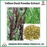 Rumex Crispus dell'estratto della polvere del bacino giallo del rifornimento della fabbrica