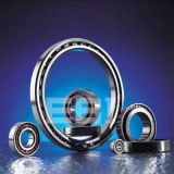Précision/roulements miniatures (EBI-013)