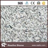 Controsoffitti bianchi del granito della pelle cinese poco costosa della tigre per vanità della stanza da bagno e della cucina