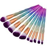 Réputation fiable de poudre de diamant d'amorçage de couleur des cheveux de renivellement de nécessaire neuf de balai