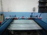 Huhn-Maschendraht/galvanisierte sechseckige Draht-Filetarbeit mit Qualität
