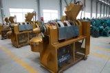 Heiße Verkäufe! ! ! Automatische Ölpresse-Maschine mit hohem Öl-Ertrag Yzlxq120