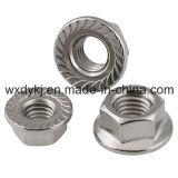 Noix de la bride A2-70 de l'acier inoxydable 304