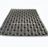 Banda transportadora del PVC de la capa durable y multi en el precio razonable