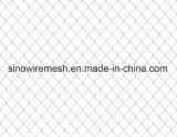 Rete fissa all'ingrosso di collegamento Chain del Virgin della Cina per protezione della costruzione