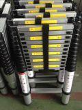 De Telescopische Ladder van het aluminium