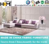 O sofá simples moderno da tela da chegada nova ajustou-se (HC570)