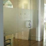 Precio bajo personalizado de gran tamaño de vidrio decorativo ventana de la película