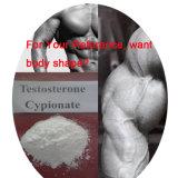 Testosteron 200mg/Ml Cypionate Einspritzung Steroid Hormon auf Ihren Selbst bilden