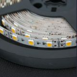 Alta tira flexible 5050 60LEDs del brillo LED