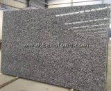 Grandes brames rouillées rouges noires grises Polished de granit pour le carrelage de partie supérieure du comptoir/de dessus/de vanité