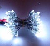 중국 공급 전지 효력 M5 LED 크리스마스 불빛 끈
