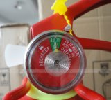 Ecuador Type 1lbs ABC Fire Extinguisher