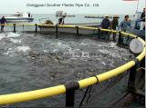 Jaulas flotantes comerciales de la acuacultura