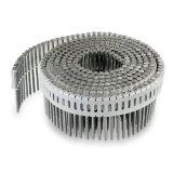Гальванизированный винт Collated проводом для толя, упаковывая, конструкция Pozi головным
