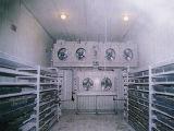 低温貯蔵の冷却装置の冷蔵室