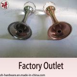 Beaux crochets de chat en alliage de zinc de cintre de double de modèle (ZH-2075)