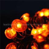 Pomme en forme de 33FT 100 LEDs Dimmable Copper Wire LED Rope Lights Lumières de Noël certifiées UL pour Tree Garden
