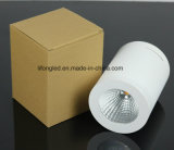 Nieuwe Design Elegant Surface COB 220V LED Downlight 7W 12W