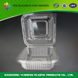 De plastic Beschikbare Duidelijke Containers van het Voedsel
