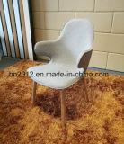 Presidenza domestica di svago di vetro di fibra della mobilia (EC-031)