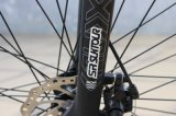 고성능 모터를 가진 Pedelec 지원 리튬 건전지 전기 자전거 또는