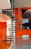 Escalera clásica de madera sólida del acero inoxidable