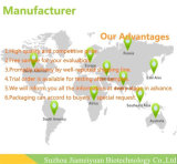 Kräuterauszüge Ginsenoside 2%~80% Panax Ginseng-Auszug