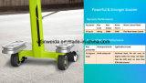Самокат пинком Scooterscooter франтовского баланса 2016 электрический электрический