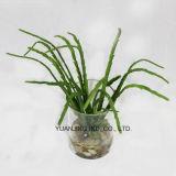 Hoja plana verde artificial con el crisol del vidrio de agua del Faux