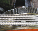 7/3.05mm, 7/3.45mm, 7/4.0mm, 19/1.8mm, 19/2.3mm. Filo di acciaio galvanizzato incagliato (GSW)
