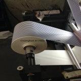Impresora doble de Digitaces Flexo del color de Ytseries