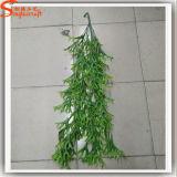 LIERRE à feuilles persistantes d'herbe artificielle pour la décoration à la maison