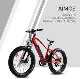 """26 """"隠された側面の引き電池および250W-1000Wギヤモーターを搭載する脂肪質のタイヤの電気バイク"""