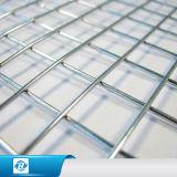 高品質の低炭素の鋼線は金網/角目の電流を通された溶接された金網を溶接した