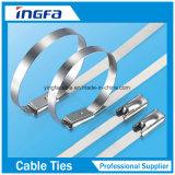 Die Abkommen-Edelstahl-Kabelbinder verweisen, die Kabelbinder binden