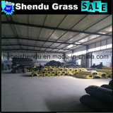 De Niet-geweven Doek van pp + Synthetische Gras van het Latex SBR het Dubbele Steunende 20mm