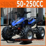 50cc 70cc 90cc 110cc Kind-Vierradantriebwagen