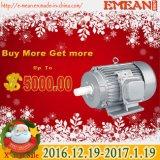 Y Kleine AC van de Reeks Elektrische Motor In drie stadia 220V