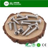 Vis en bois de tête de carter d'encastrement de croix d'acier inoxydable (DIN7996)