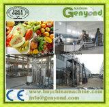 De Installatie van de Verwerking van het fruit en van het Groentesap
